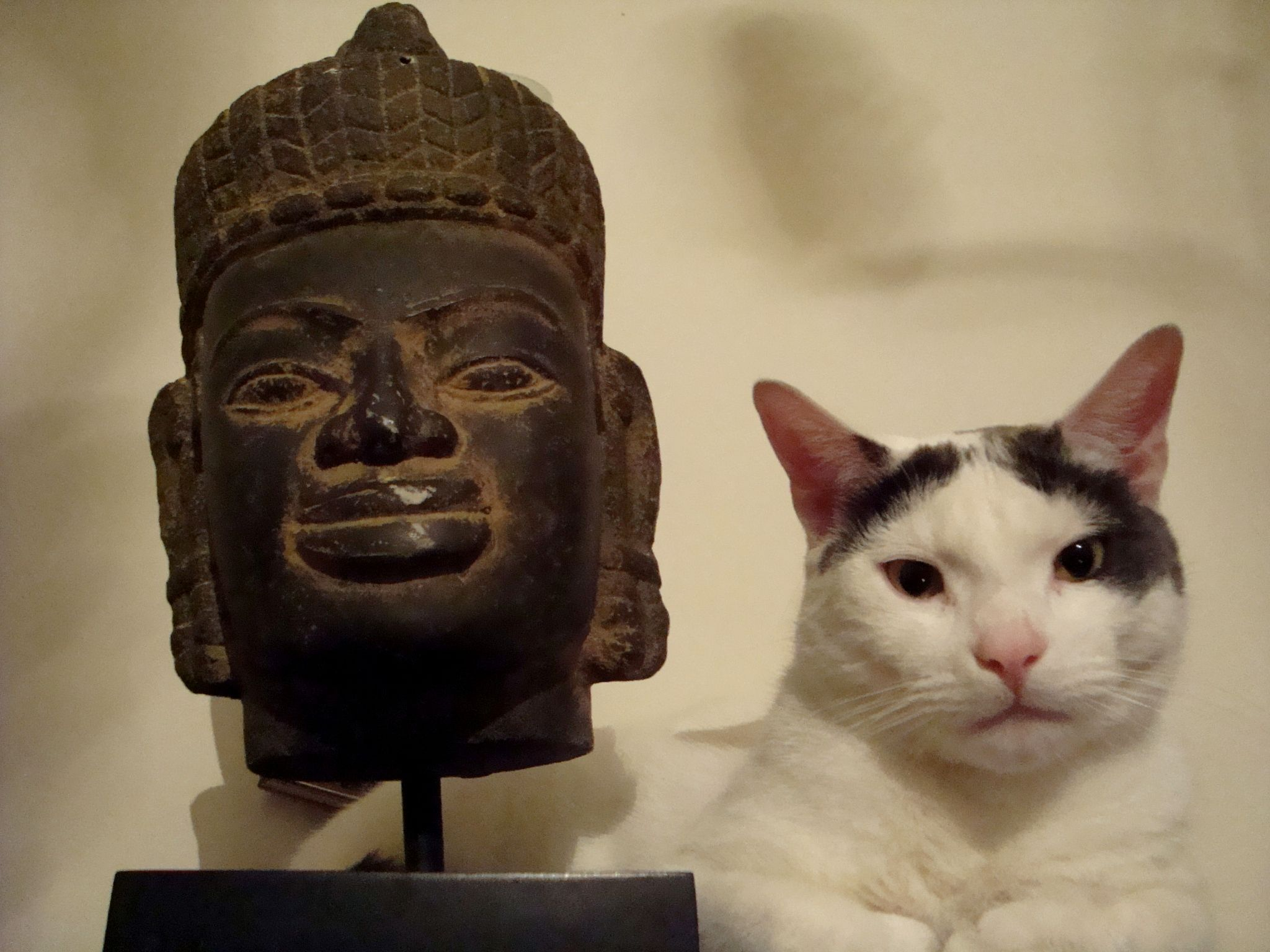 Merlin and Buddha