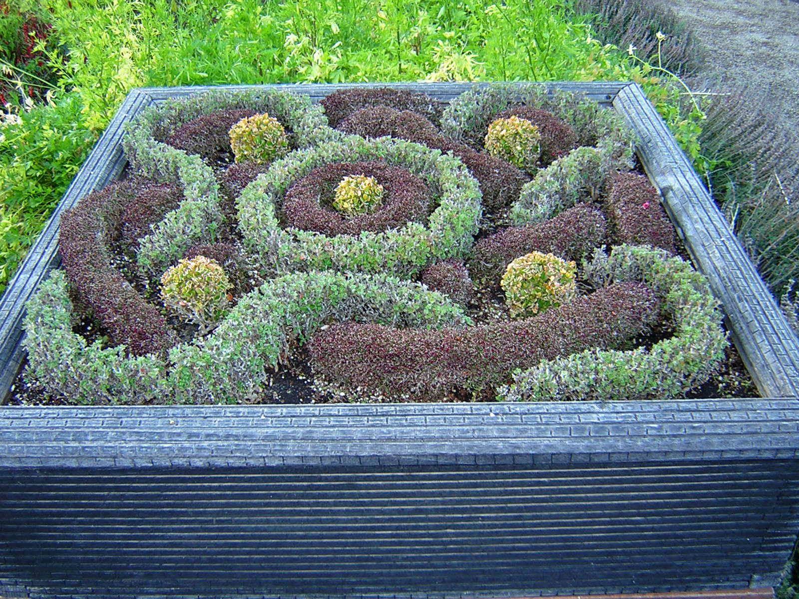 garden design ks2