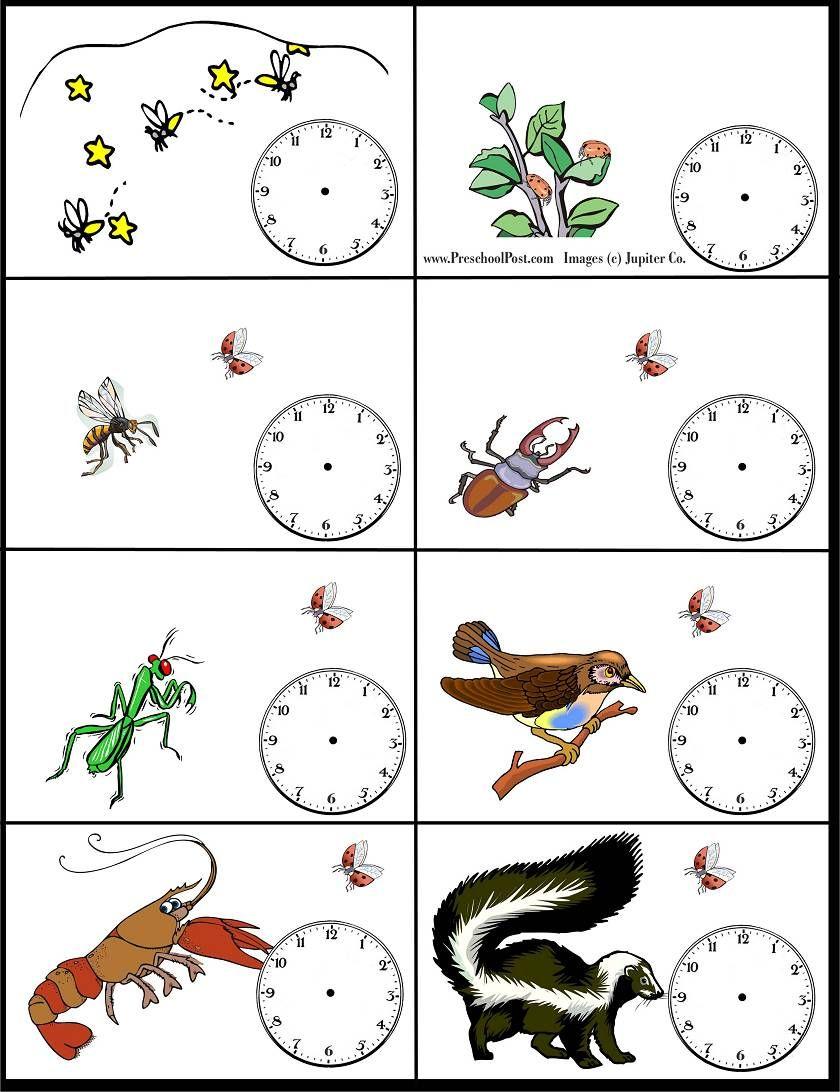 The Grouchy Ladybug Time Worksheet Grouchy Ladybug Grouchy