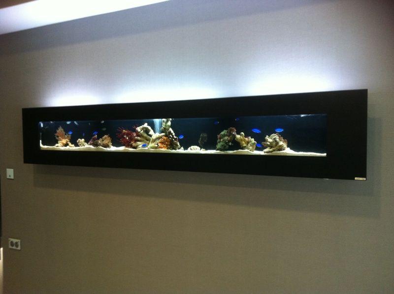 Wall Mounted Fish Tank Google Search Marine Aquarium