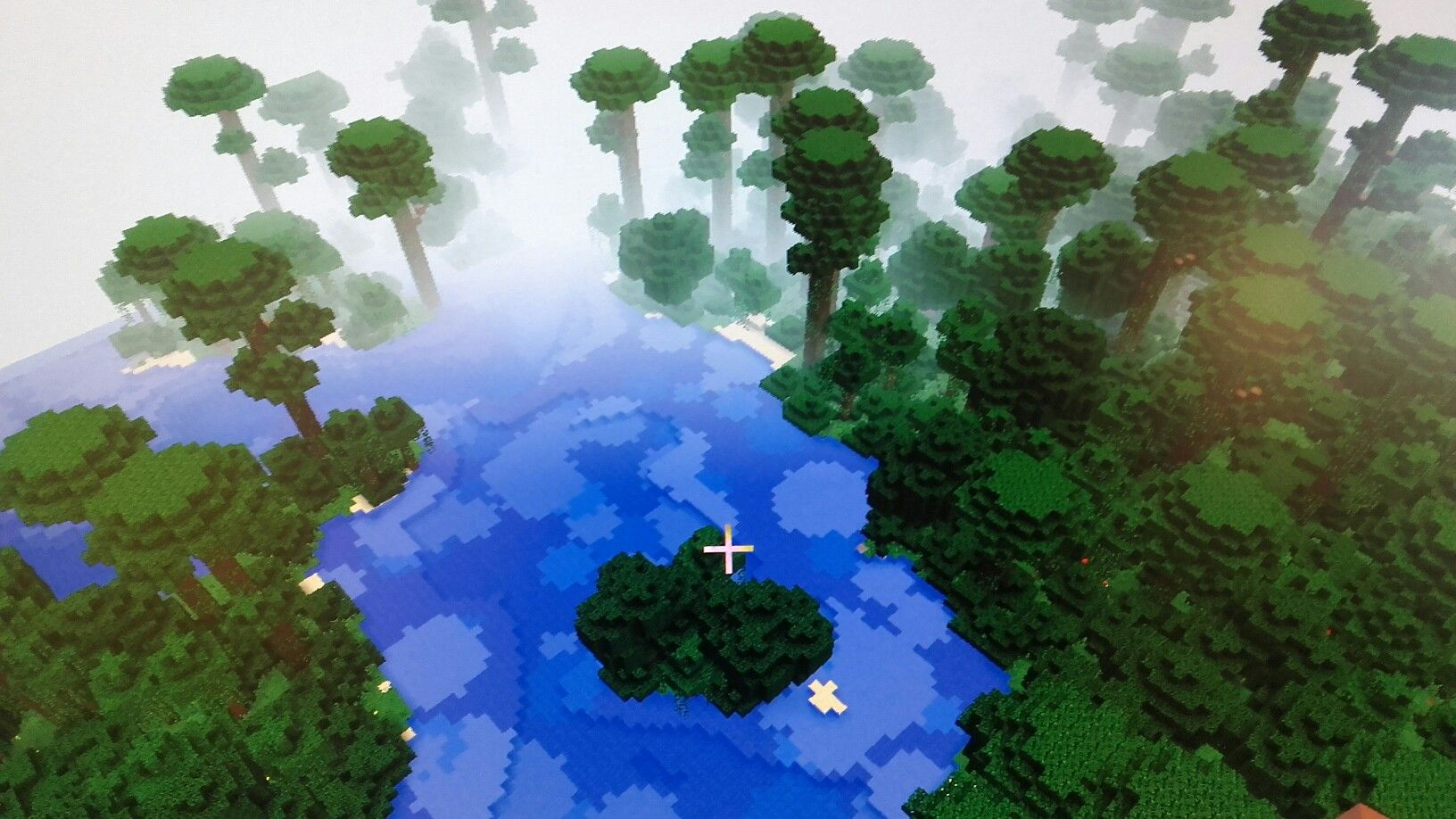 Seed number 11111111 for pc minecraft it works