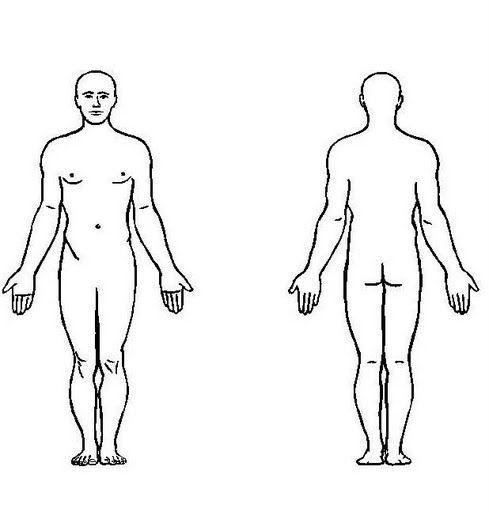 Fichas Infantiles Del Cuerpo Humano Para Ninos Descargar Gratis Fichas Del Cuerpo Hu Cuerpo Humano Anatomia Cuerpo Humano Para Ninos Silueta Del Cuerpo Humano