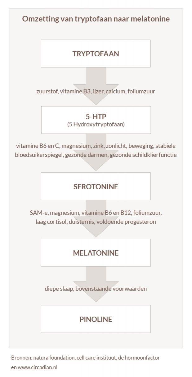 Slaap je gezond - Rineke Dijkinga Health and wellness Health and