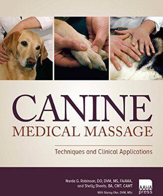 Robot Check Medical Massage Equine Massage Therapy Equine Massage