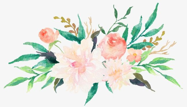 Colored Watercolor Flowers Watercolor Clipart Pale Flower Png And Vector With Transparent Background For Free Download Watercolor Flowers Floral Watercolor Flower Painting