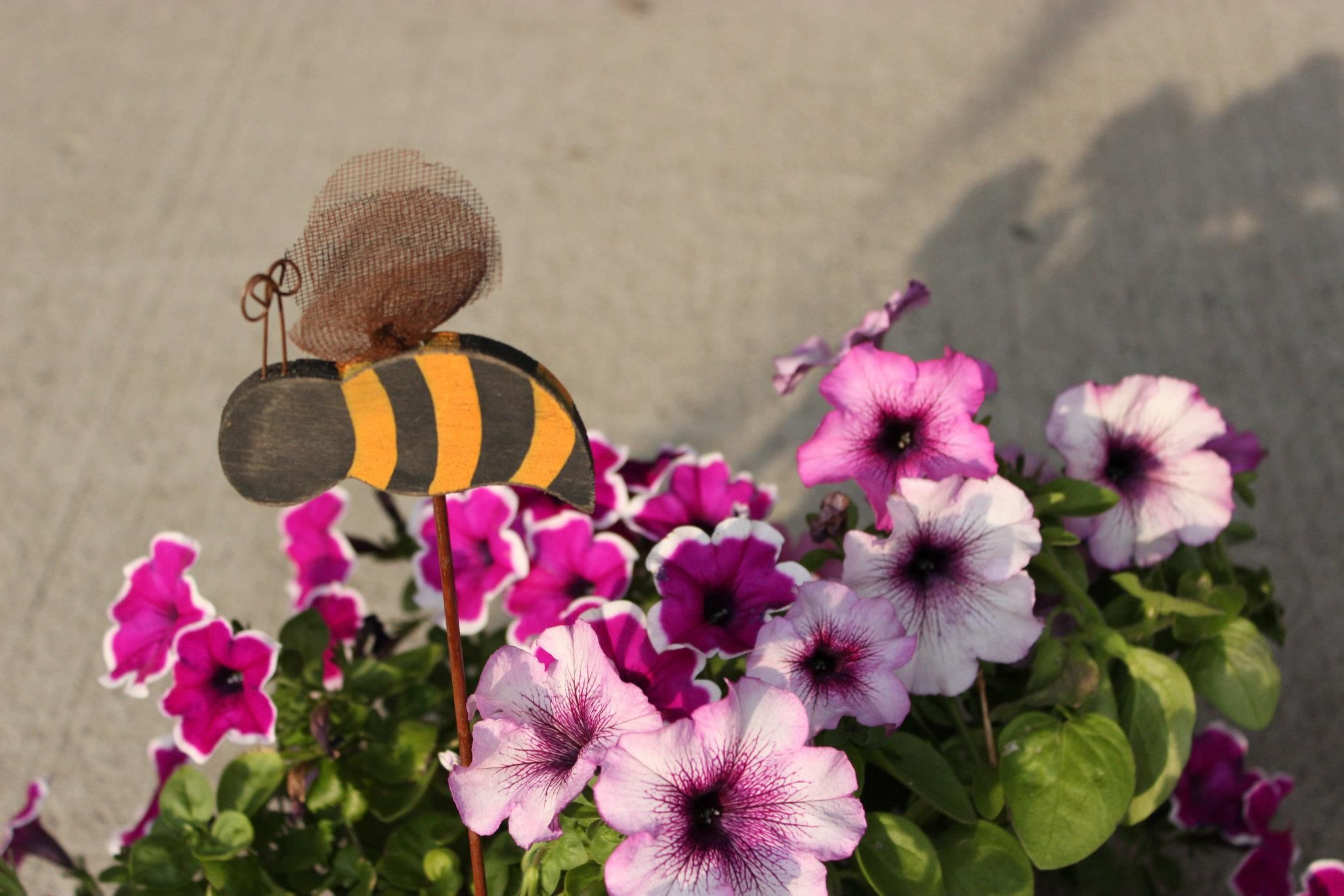 our busy bee in front of our office!
