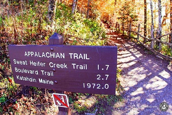 Appalachian Trail Markierung