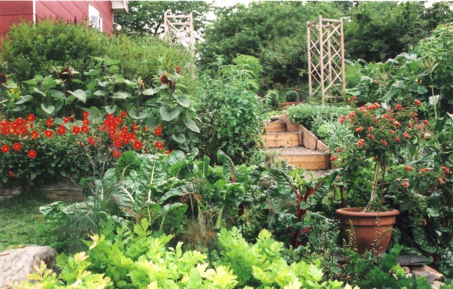 slänt i trädgården - Sök på Google