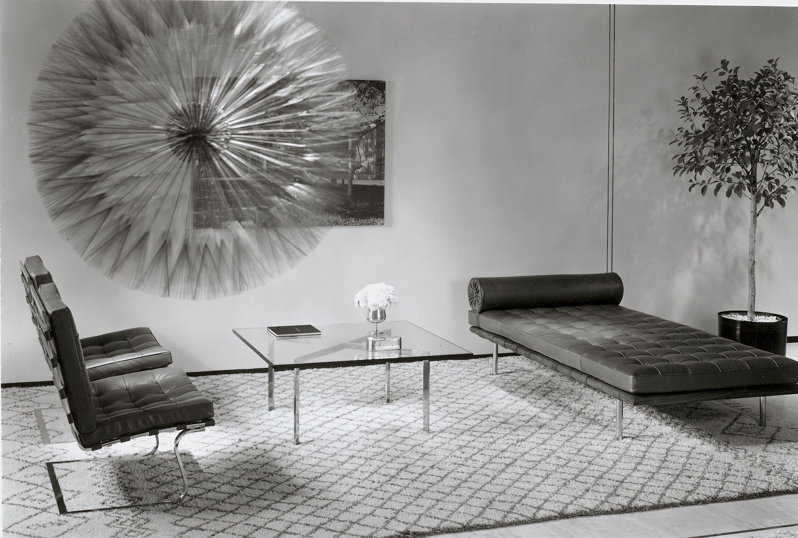 Mies Barcelona couch and table and Tugendhat chairs