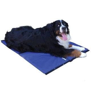 Coolerdog Hydro Cooling Mat Medium White Funny Animal Videos
