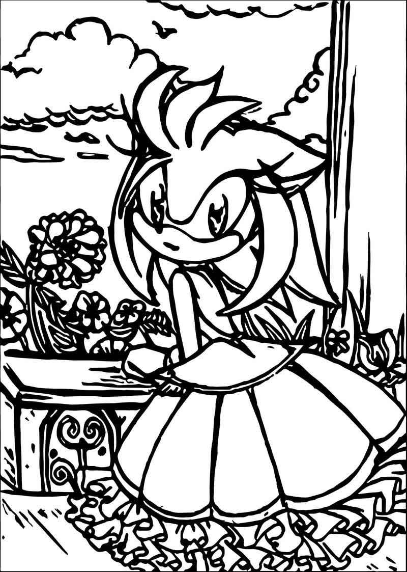 Princess Amy Rose Coloring Pages Rose Coloring Pages Forest Coloring Pages Amy Rose [ 1123 x 800 Pixel ]