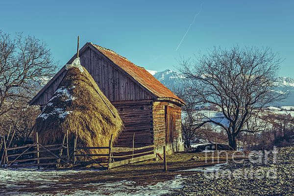 Spring Rural Scenery With Traditional Romanian Wooden Barn Cowshed Stable And Haystack In Magura Village Brasov County Transylvania Re Rural Brasov Scenery