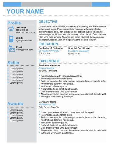 Conservative Professional Business Resume Template  Original Resume