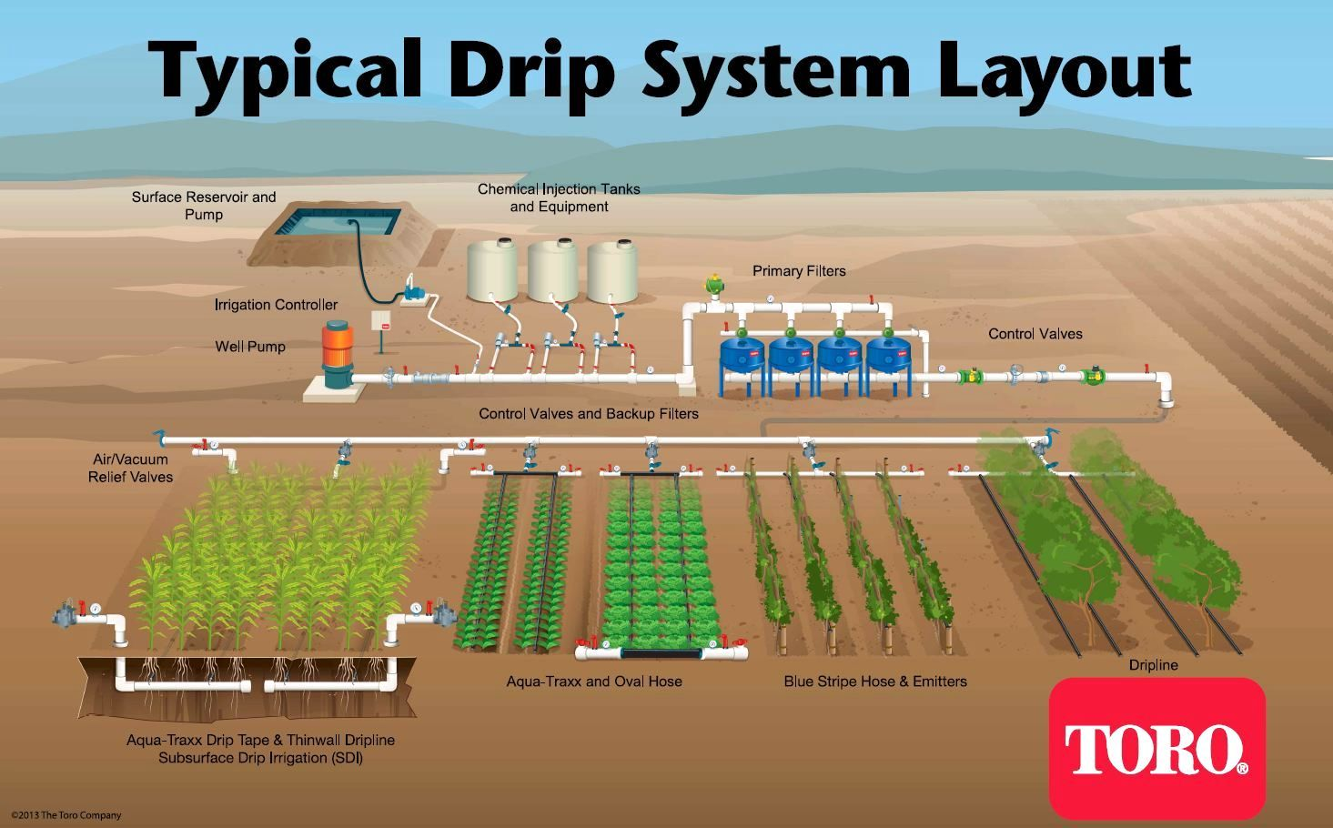 Design Vegetable Garden Irrigation System Subsurface Drip