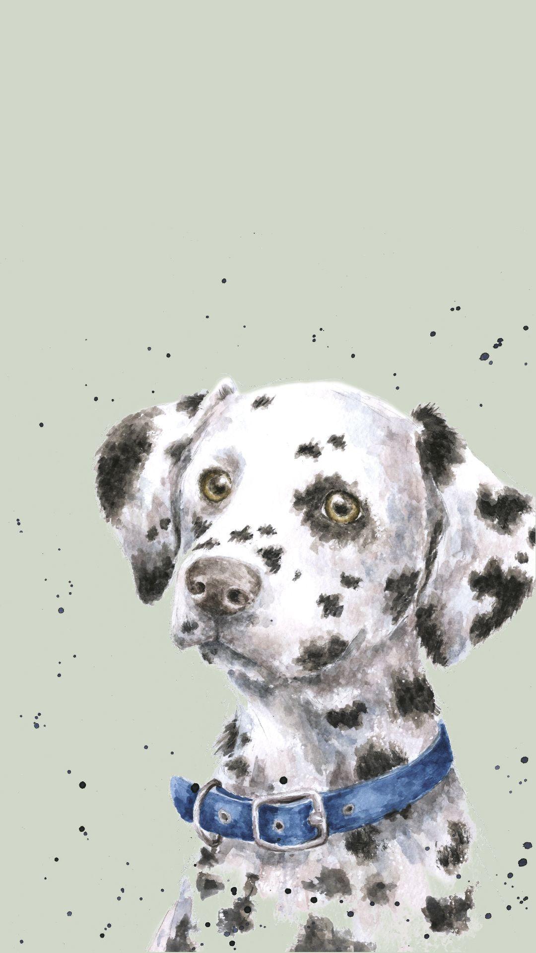 Dog wallpaper, Dalmatian dogs