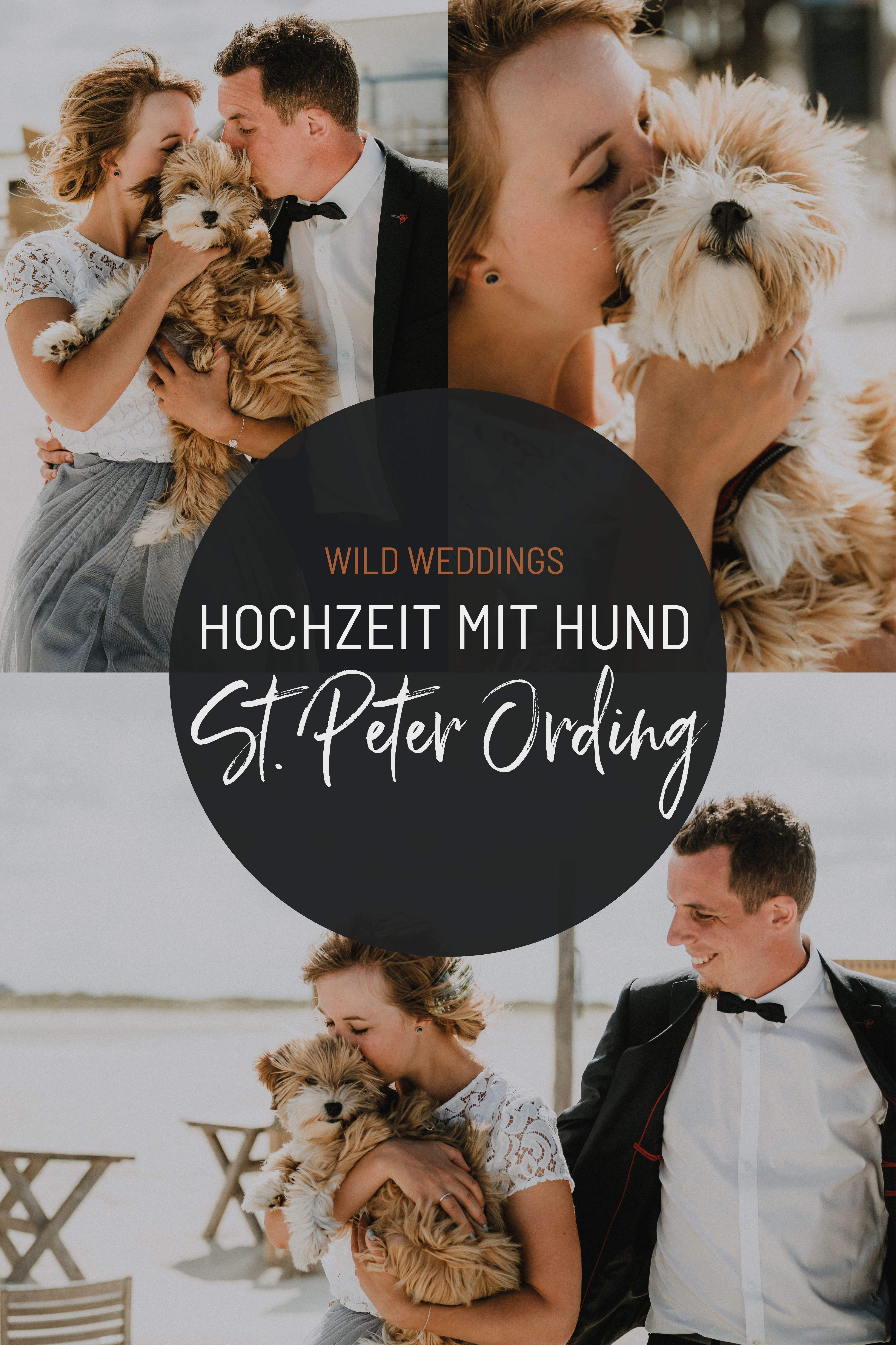Hochzeit Mit Hund Arche Noah St Peter Ording Brunch Hochzeit Strandhochzeit Hochzeit