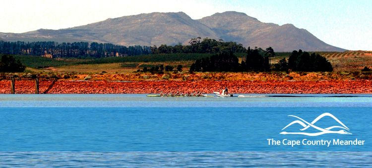 June 2014 ~ South East from Cape Town ~ The Cape Country Meander