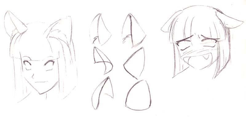 How To Draw Ears That Stand Up Anime Cat Ears Fairy Drawings Animal Drawings
