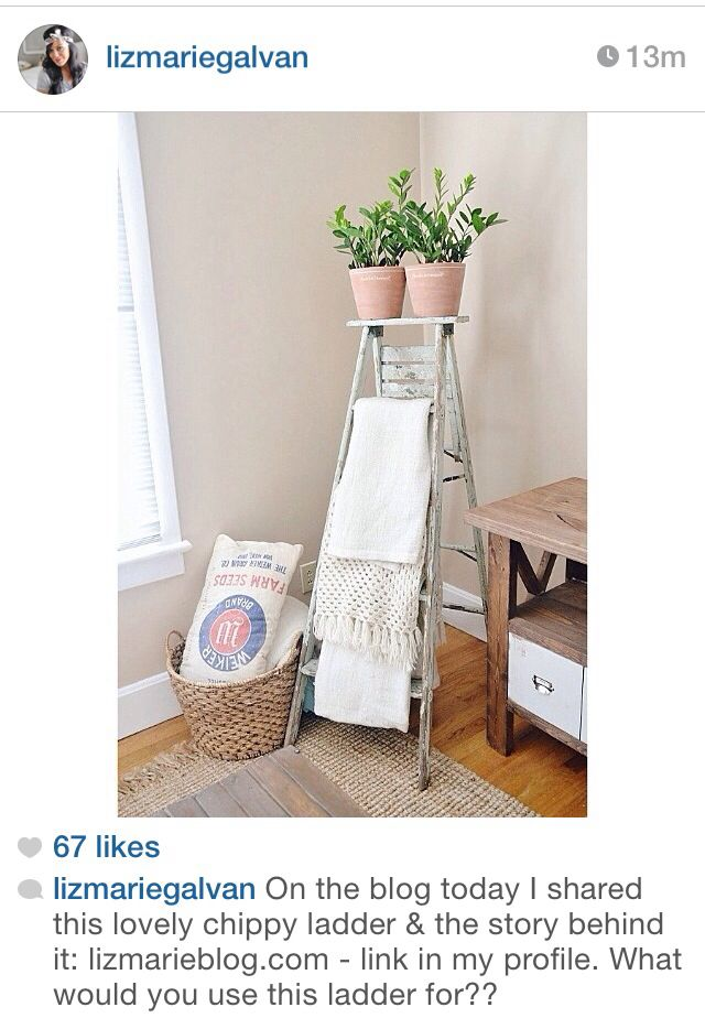 Cute use of an old ladder!