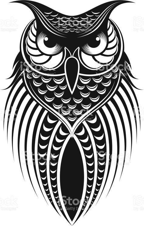 Owl Illustration Imagem Coruja Coruja Desenho E Corujas Tatoo