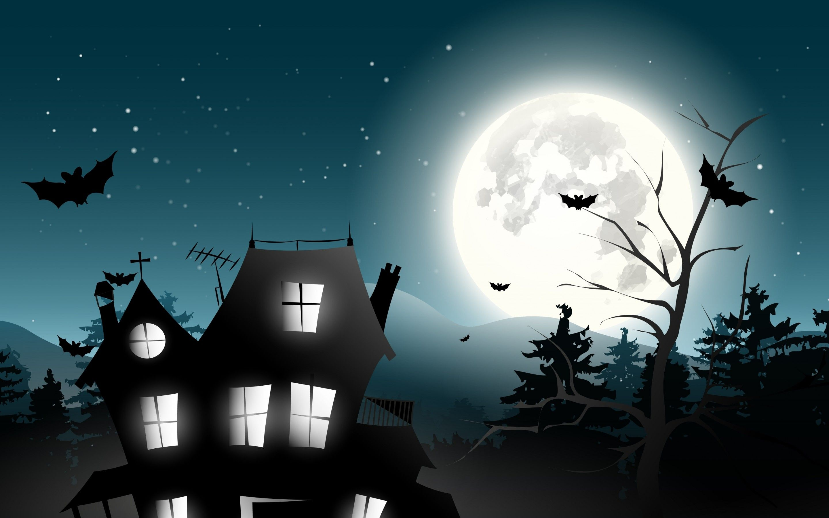 halloween witch on broom hd desktop wallpaper widescreen high cell