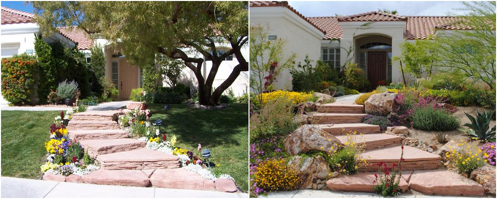 landscaping ideas