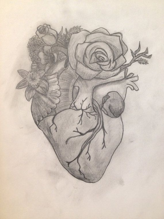 Original Anatomical Heart with Flowers Pencil Drawing by