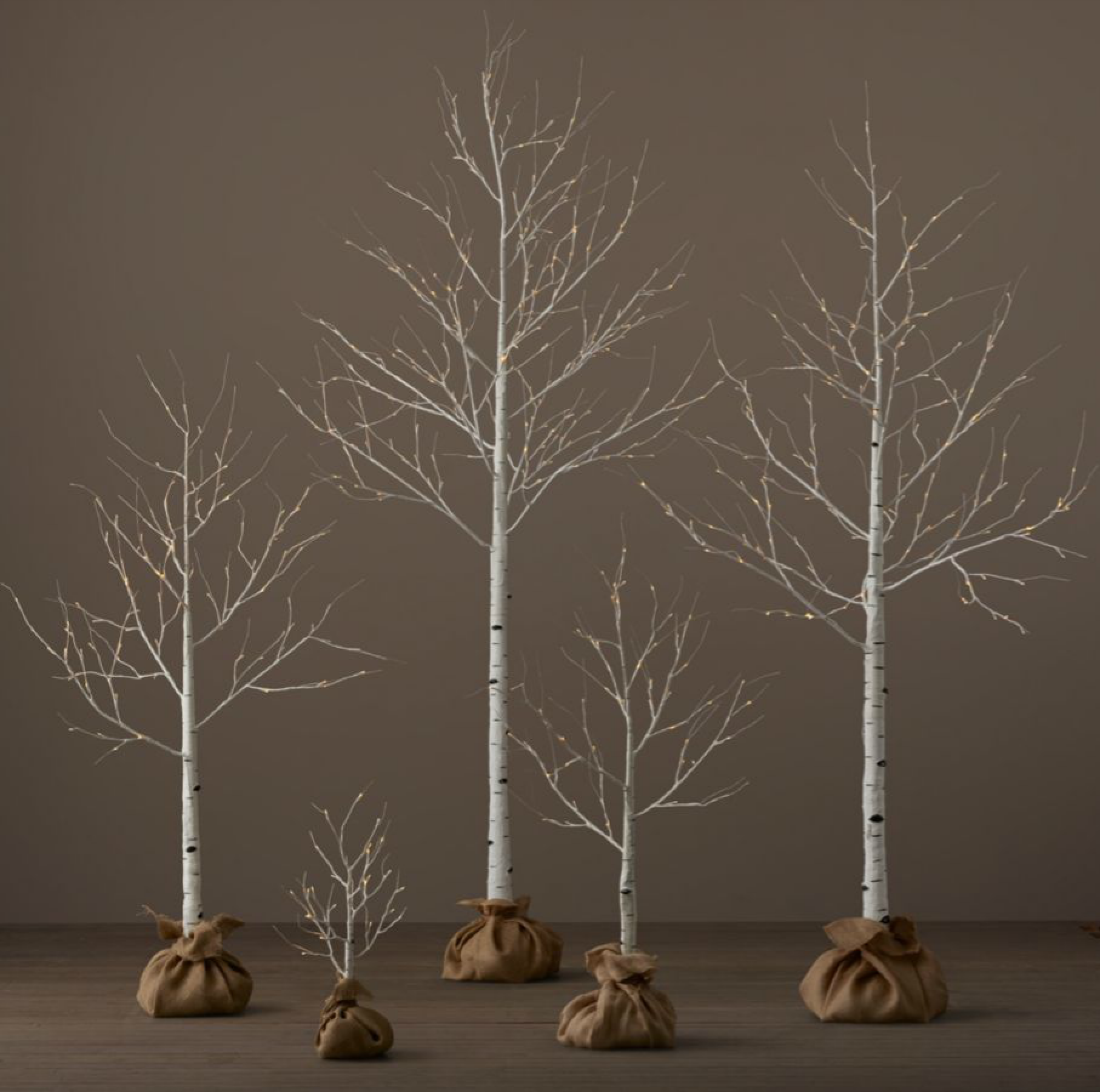 Home Office Decor, Birch Trees, Office Designs, Outdoor Settings, Christmas