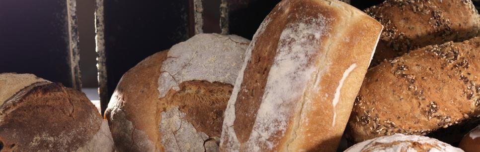 Oppskrift på grovbrød fra Bakeriet i Lom