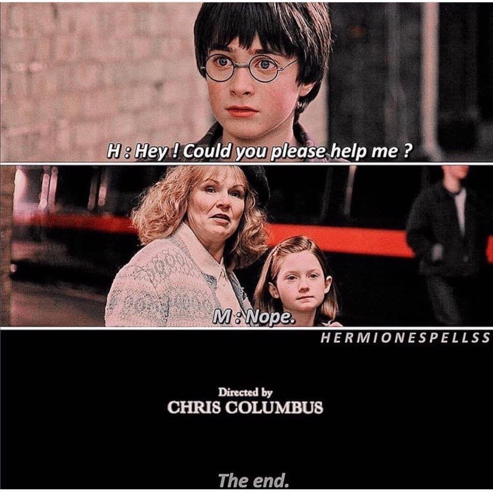 Pin By Areg Every On Harry Potter Funny Memes Chris Columbus Dankest Memes