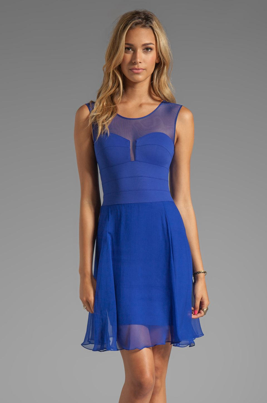 Bcbgmaxazria sheer combo dress in royal blue from revolveclothing