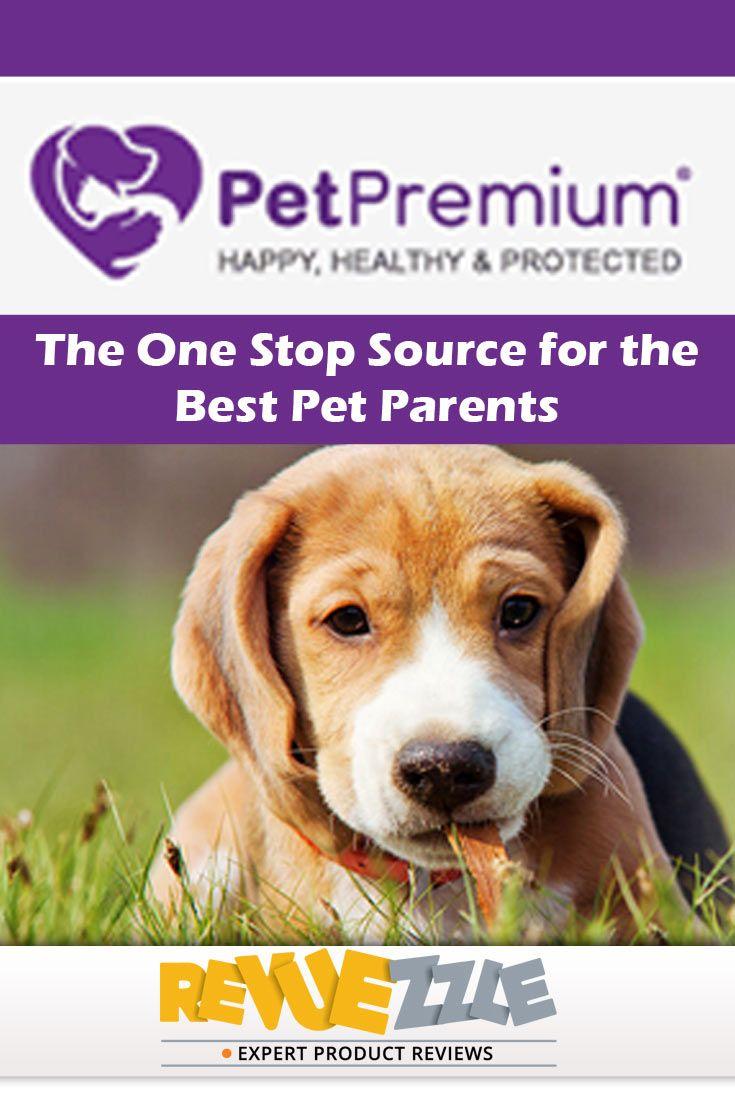 PetPremium Pet Insurance Review 2017 Pet insurance