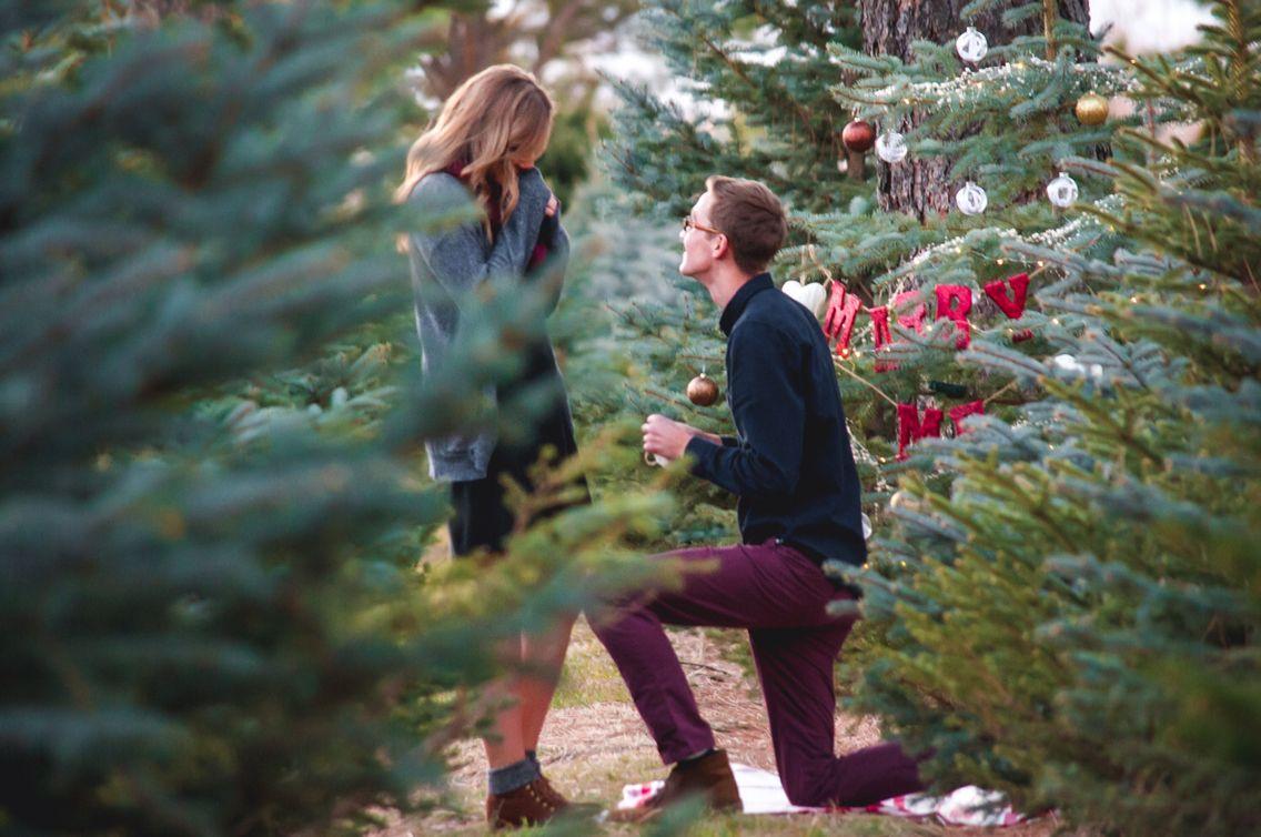 Christmas Tree Farm Proposal Christmas Proposal Tree Farm Proposal Romantic Ways To Propose