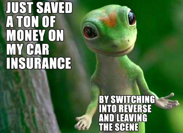 20811e4b07d9a2e4c04b9d54185c0148 funny pic car insurance problems solved! funny gecko meme