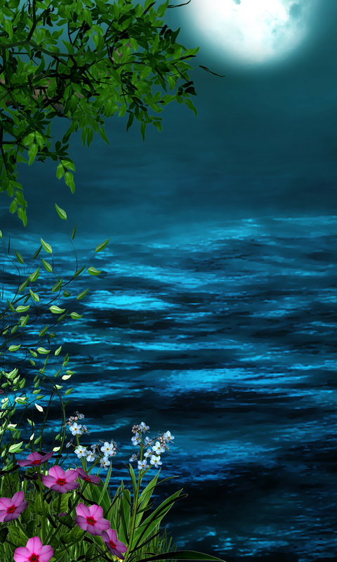 Download Night 480 X 800 Wallpapers 4583181 Moon Blue Water Flower Pink Green Leaf Sky Beautiful Nature Wallpaper Beautiful Wallpapers Beautiful Landscapes