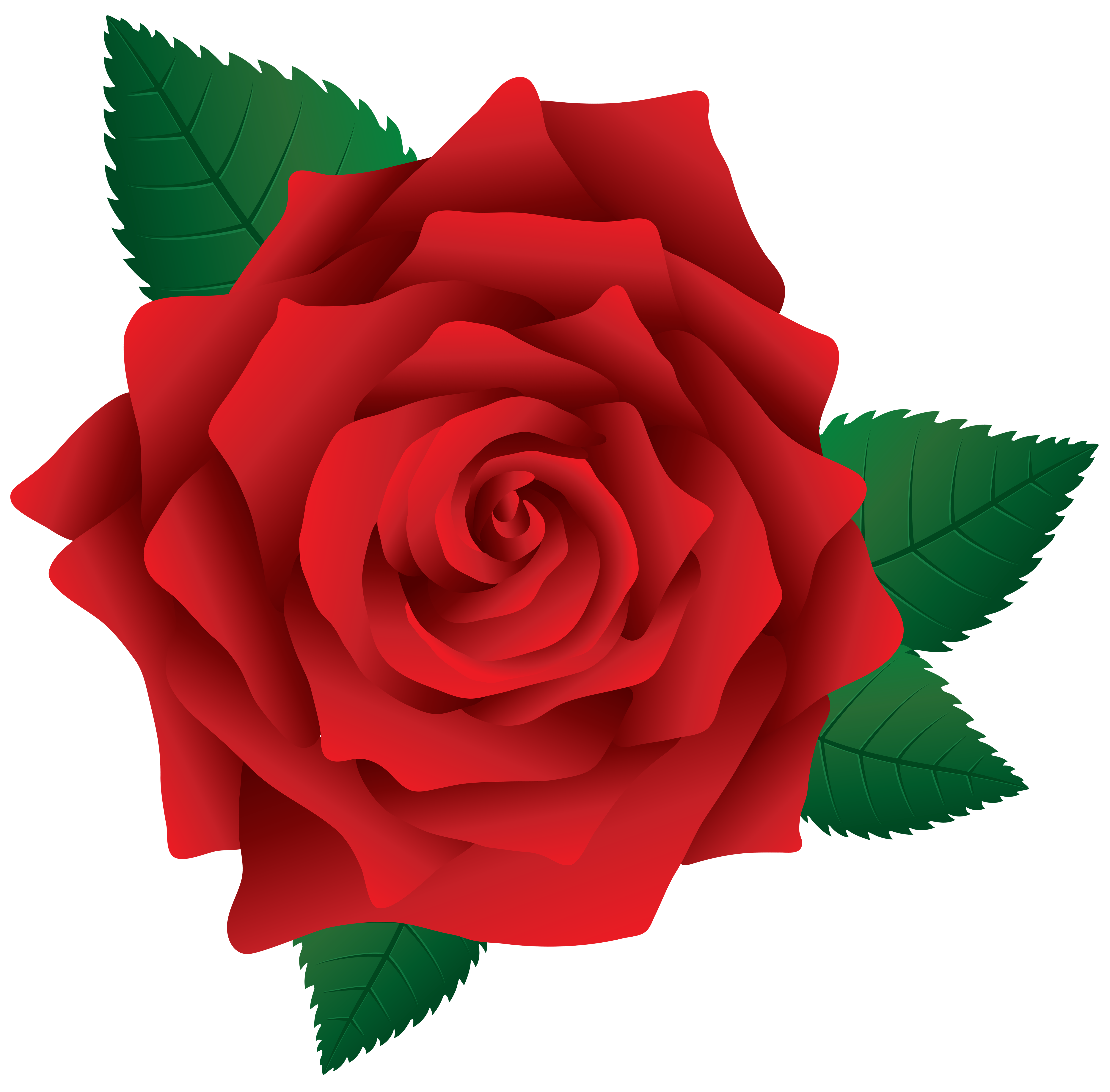 Red Rose Png Image Clipart Red Rose Png Flower Phone Wallpaper Red Roses