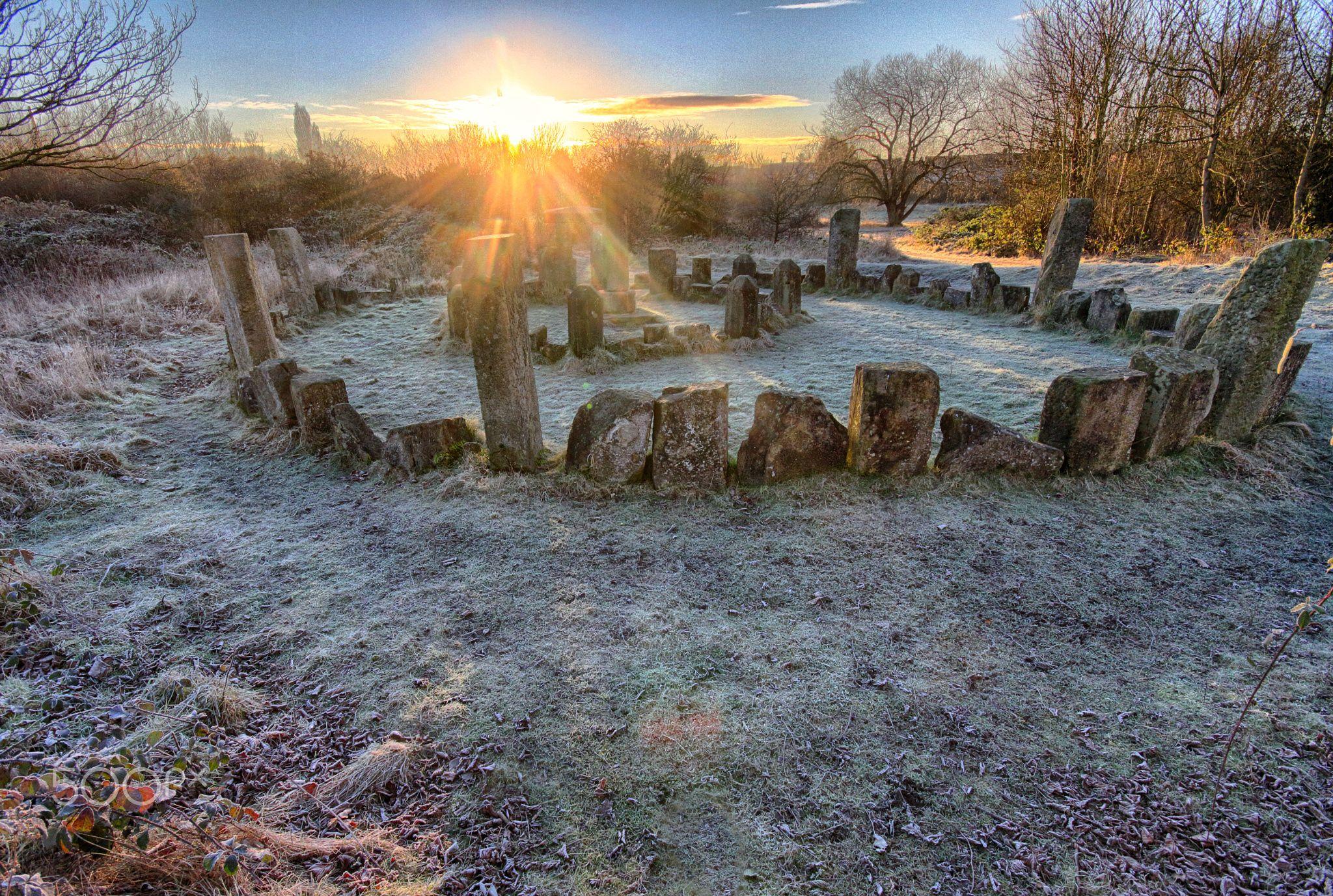 Frosty sunrise - Frosty sunrise