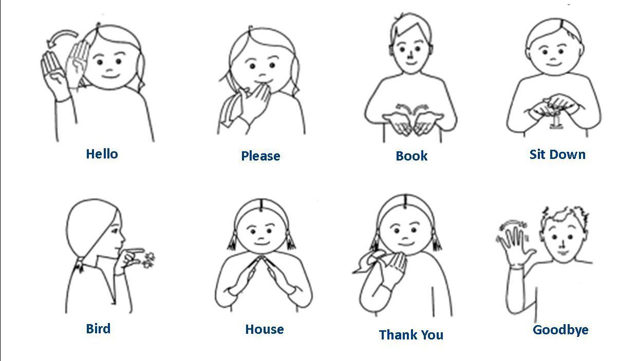Basic classroom makaton signs sign language pinterest for Why does pussy smell like fish