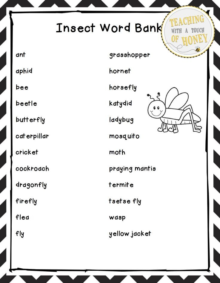 """$ Report writing can be challenging for students. Use these """"insect"""" tiered report writing templates with your students as they work through the report writing process."""