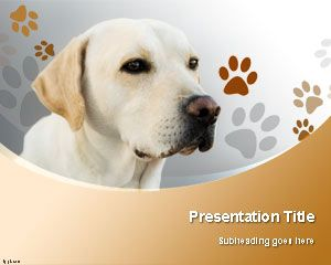 labrador retriever dog powerpoint template is a background, Modern powerpoint