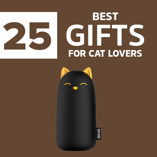 24 Best Gifts For Cat In 2018