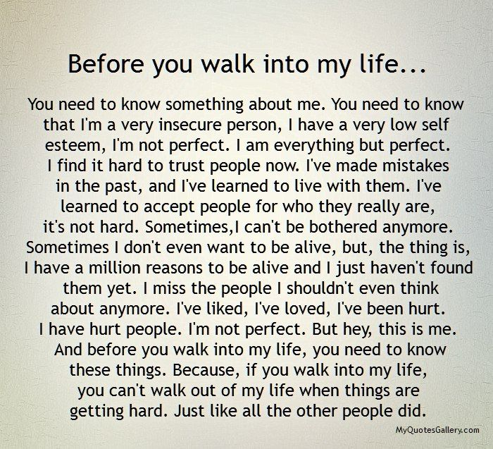 Before You Walk Into My Life Myquotesgallerycom Quotes