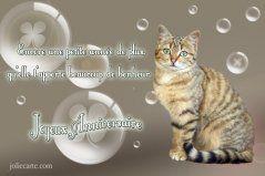 Cartes Virtuelles Joyeux Anniversaire Gratuites Joliecarte Com Joyeux Anniversaire Chats Joyeux Anniversaire Gratuit Images Joyeux Anniversaire Gratuites