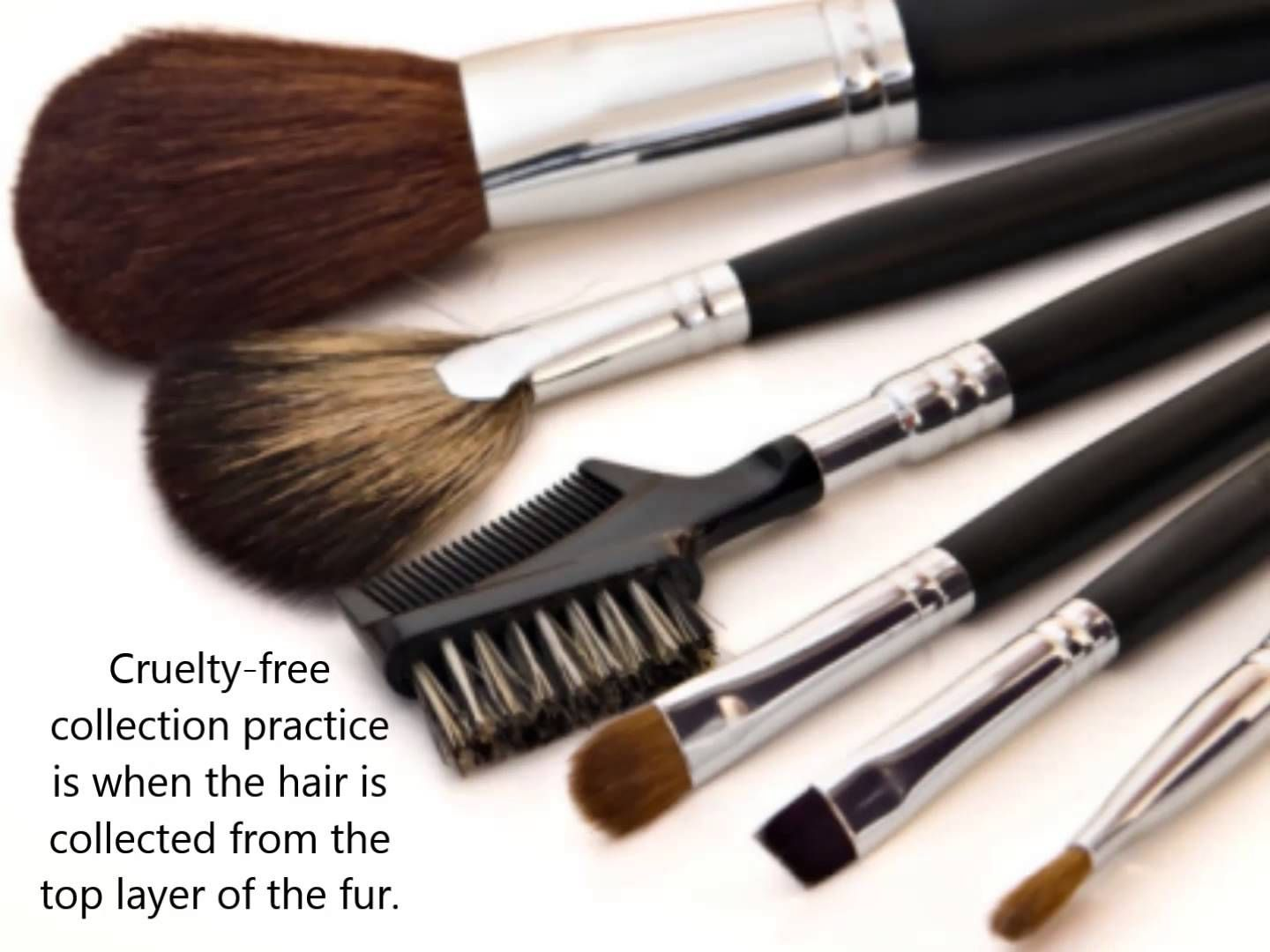 Dazzler Beauty FAQ What's the difference between natural