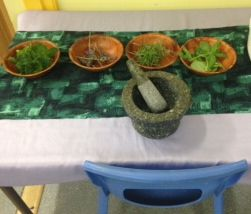 Smelling table with herbs and leaves