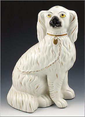 Large-19thC-Blanco-Staffordshire-estatuilla-de-perro-Spaniel