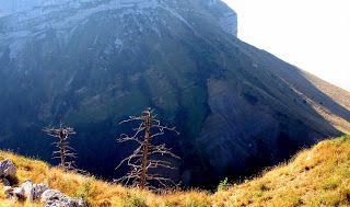 Trekking De Bernard Comme D Habitude Trekking Randonnee Habitudes
