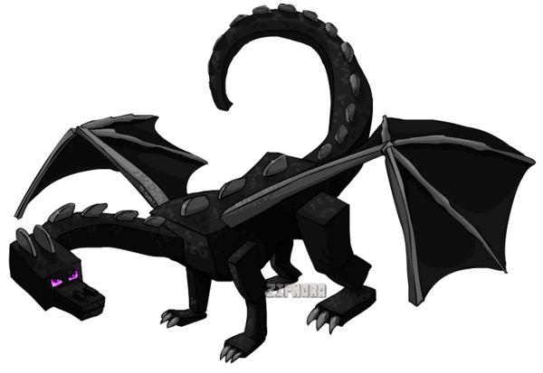 Minecraft Ender Dragon Minecraft Ender Dragon Art Dragon