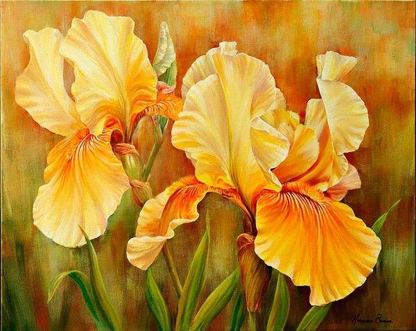 Peintures marianne broome iris en 2018 pinterest peinture fleurs peinture et acrylique - Coloriage fleur iris ...