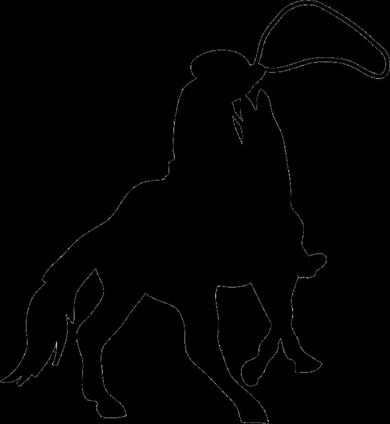Cowboy Silhouette Png Image Purepng Free Transparent Cc0 Png Image Library Vaqueiro Artes Png